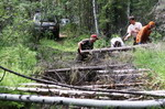 Байкал-Трофи