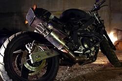 Kawasaki ZZR 400 «Rat»