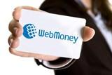 В чем отличие получения кредита кредит WMZ от WMR?