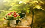 Недорогая доставка цветов в Днепре
