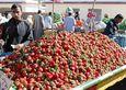 Килограмм этой великолепной свежей клубники даже по «специальной цене для иностранных туристов» обходится в 25 рублей