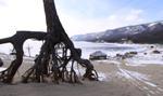 Песчаная – Крестовский – Хобой